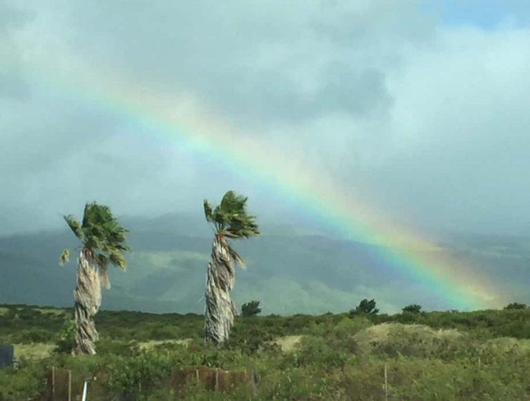Another rainbow!