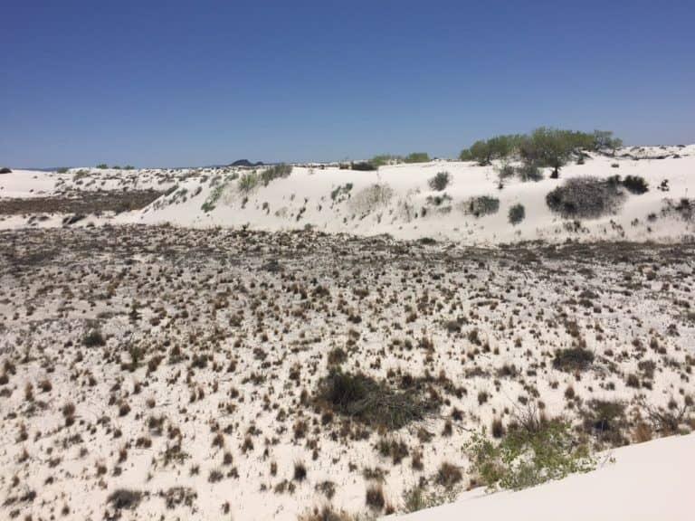 White Sands n