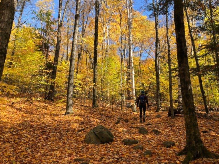 Enjoying a spectacular fall hike!